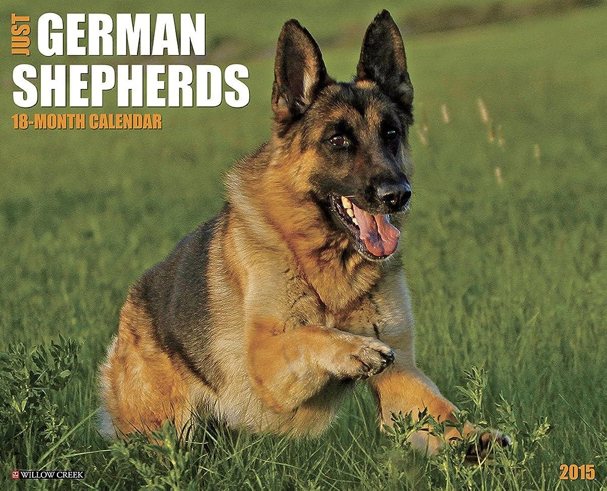 手ドレイン洪水Just German Shepherds 18-Month 2015 Calendar