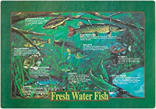 Hoffmaster 310979 Paper Placemat Fresh