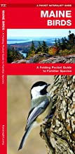 Maine Birds: A Folding Pocket Guide to Familiar Species (Wildlife and Nature Identification)