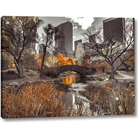 View Of Small Bridge Over Water Stream At Central Park New York City 2 By Assaf Frank 27 X 36 Gallery Wrapped Canvas Wall Art Print Ready To Hang Posters