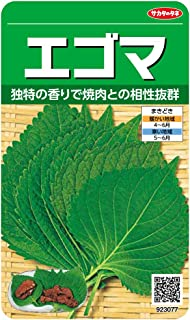 サカタのタネ 実咲野菜3077 エゴマ 00923077