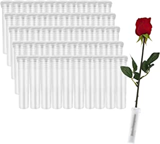 Xkfgcm 50 pièces Fleur Tubes en Plastique Transparent Fleur Flacons Fleur d'eau Conteneur Fleuriste Arrangements Floraux F...