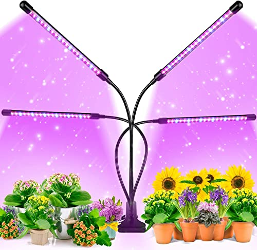 Top Rated In Indoor Gardening Hydroponics Helpful Customer Reviews Amazon Com
