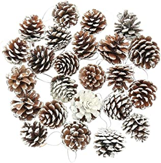 DSSY 30 Pieces 1.57 Inch Christmas Pine Cones Ornament Natural PineCones with String Pendant Crafts for Gift Tag Christmas Tree Party Hanging Decoration(White)