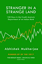 Stranger in a Strange Land: 100 Days in the Credit Analysis Department of an Indian Bank