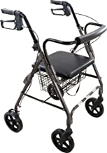 ProBasics 4 Wheel Medical Rolling Walker with Wheels, Seat, Backrest and Storage Pouch - Rollator Walker for Seniors- Durable Aluminum Frame Supports up to 300 lbs, 8-inch Wheels, Gray