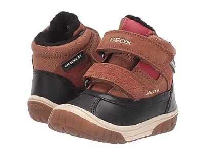 Geox Kids Omar Waterproof 2 (Toddler) (Brown/Red) Boys Shoes
