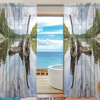 Symmetrical pattern Shutters Sheer Tier Curtains for Kitche,Bedroom,Casual Weave Window Curtain,2 Panels,Driftwood Decor,Remains of a White Cedar Tree Trunk in Lake and the Sky Image,Green Grey