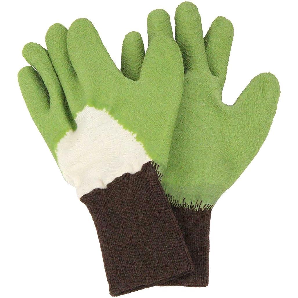復讐こしょう教育学セフティー3 トゲがささりにくい手袋 グリーン M