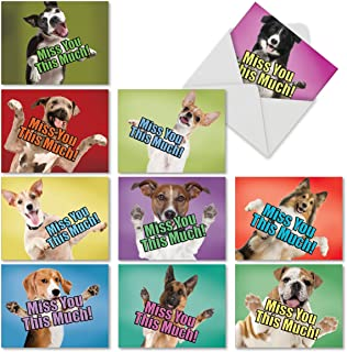 Best where can i buy blank greeting cards Reviews