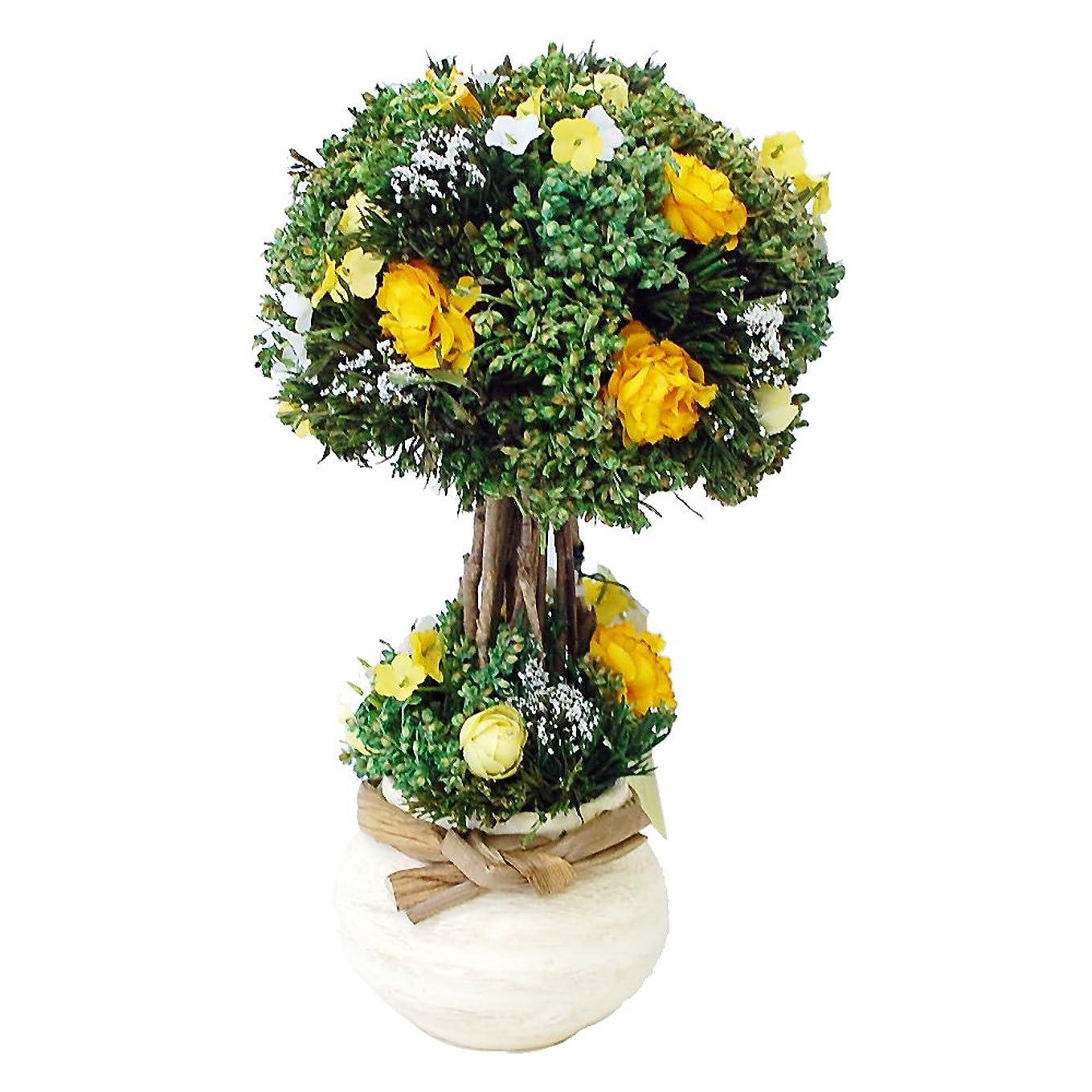 ラリーボタンソースパラボッセオリジナル ドライフラワー キャンディトピアリー 小 イエロー 横幅15cmx奥行15cmx高さ26cm dry flowers topiary