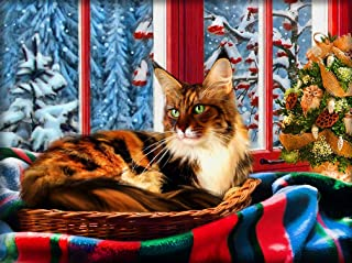 Cat 5D DIY Diamond Painting Picture for Adults Diamond Mosais Art Craft Round Full Painting