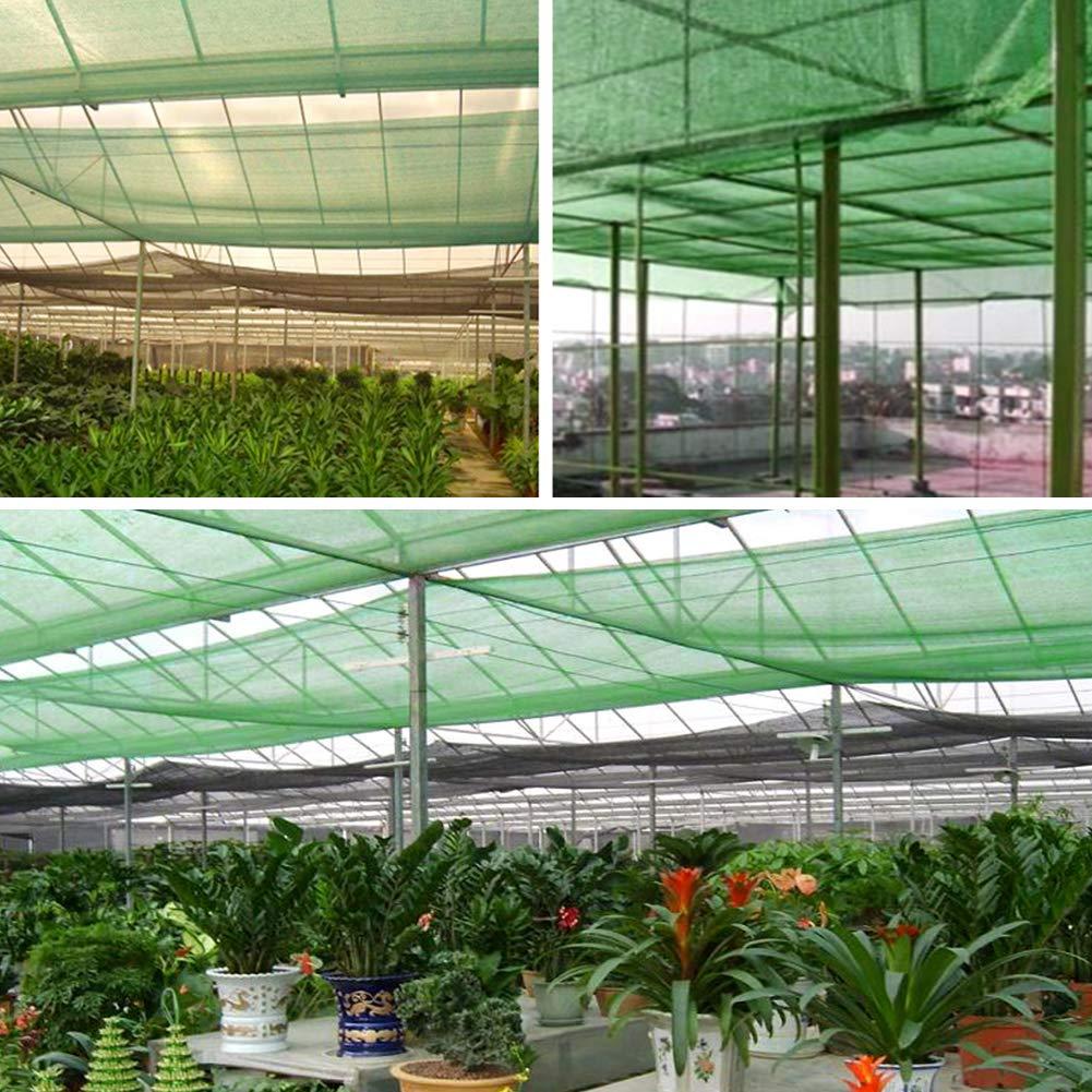 WZJN Red de sombrilla, Color Verde 70% Sombrilla Red Malla Sombra Bloqueador Solar Sombra Paño Red Resistente a los Rayos UV para jardín Flor Planta para Invernadero,3 * 5m: Amazon.es: Hogar