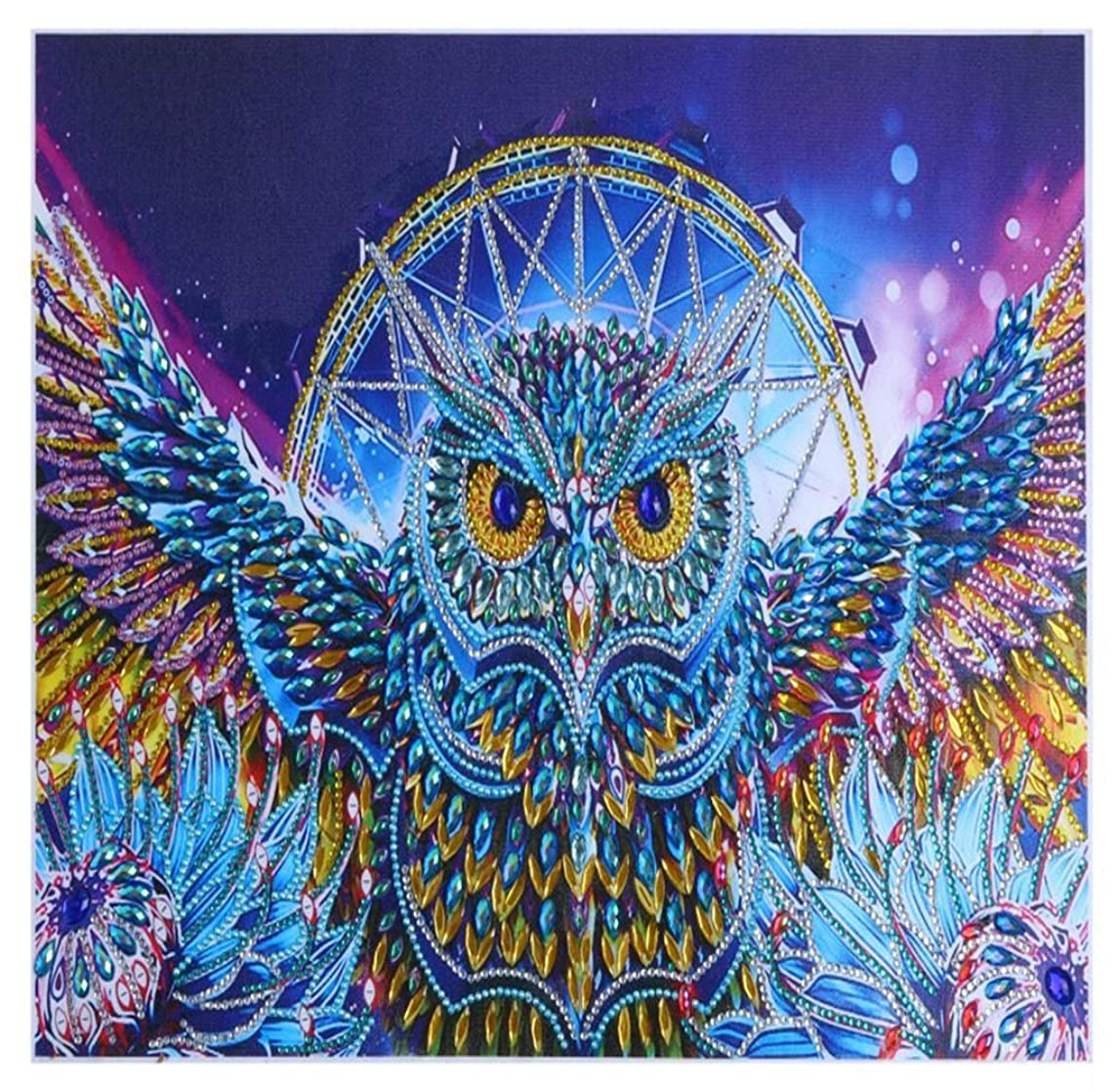 5D Special Shaped Diamond Painting Kit,Eagle Partial Section Drill DIY Diamond Rhinestone Painting Kits for Adults and Children Embroidery Arts Craft Home Decor Ross Beauty