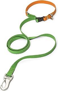 سلسلة توجيه للكلاب مع قبضة مريحة من ويست بو جيونتس - قياس صغير، لون أخضر - برتقالي، صنع في الولايات المتحدة الأمريكية