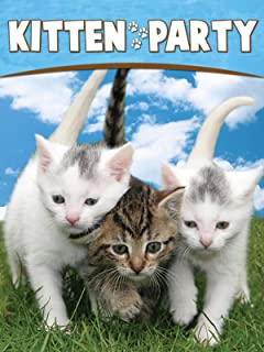 Best kittens and horses Reviews