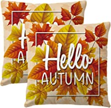 ULOVE LOVE YOURSELF Hello Autumn Decorative Pillow Cases for Throw Pillows with Maple Leaves Pattern Happy Fall Square Cushion Cover 18x18 Inches,2Pack for Seasonal Decor (Maple Red)