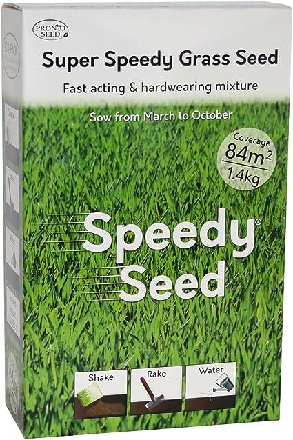 Speedy Seed
