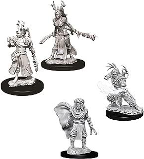 Dungeons & Dragons Nolzur's Marvelous Unpainted Miniatures Bundle: Male Human Druid W6 + Female Human Druid W9