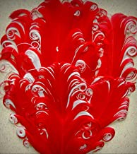 1 Packet of Nagorie Crafting Feather Pad - Red White Curly Goose Pads Art Custome - for DIY Craft Costumes Hats Pens Hair Accessories Trim Mask Wedding Home Party Decorations