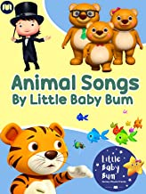 Animal Songs by Little Baby Bum