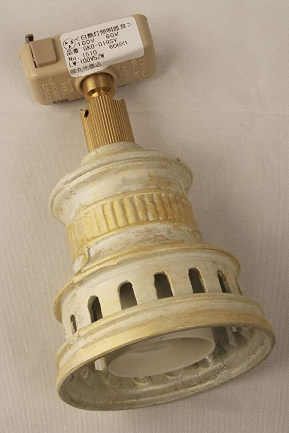 運ぶ再発するプレゼンテーションアンティークスポットライト<rusty-socket>(一般天井器具用-電球別売)