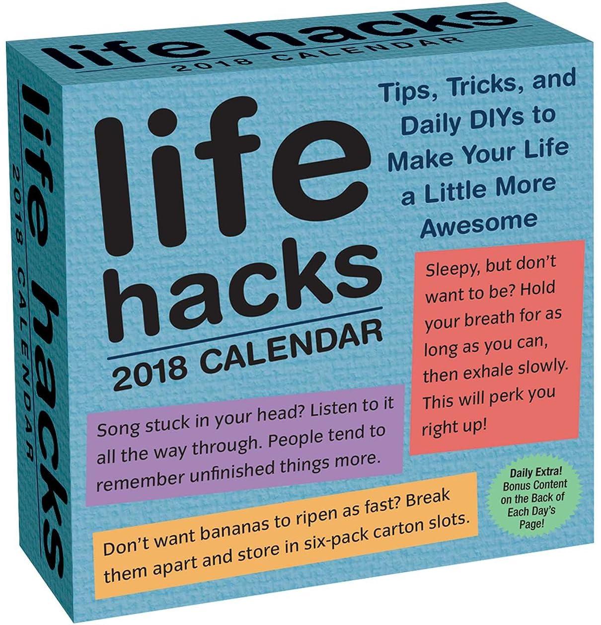 コンパイルサイバースペースセットするLife Hacks 2018 Day-to-Day Calendar