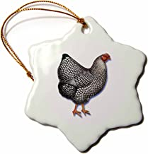 3dRose ORN_170779_1 Hen with White Feathers Edged in Black Victorian Bird Illustration-Snowflake Ornament, Porcelain, 3-Inch