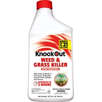 Knockout Concentrate Weed and Grass Killer (32 oz)