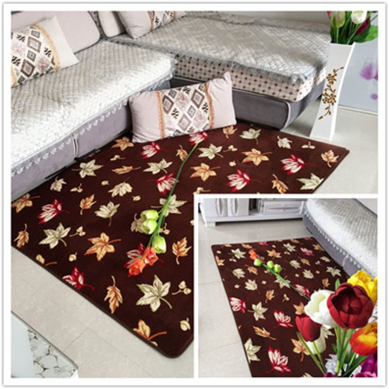 Coral velvet thick non-slip mat Living room Bedroom Bedside non-slip door mat Foot pad-I 50x80cm(20x31inch)