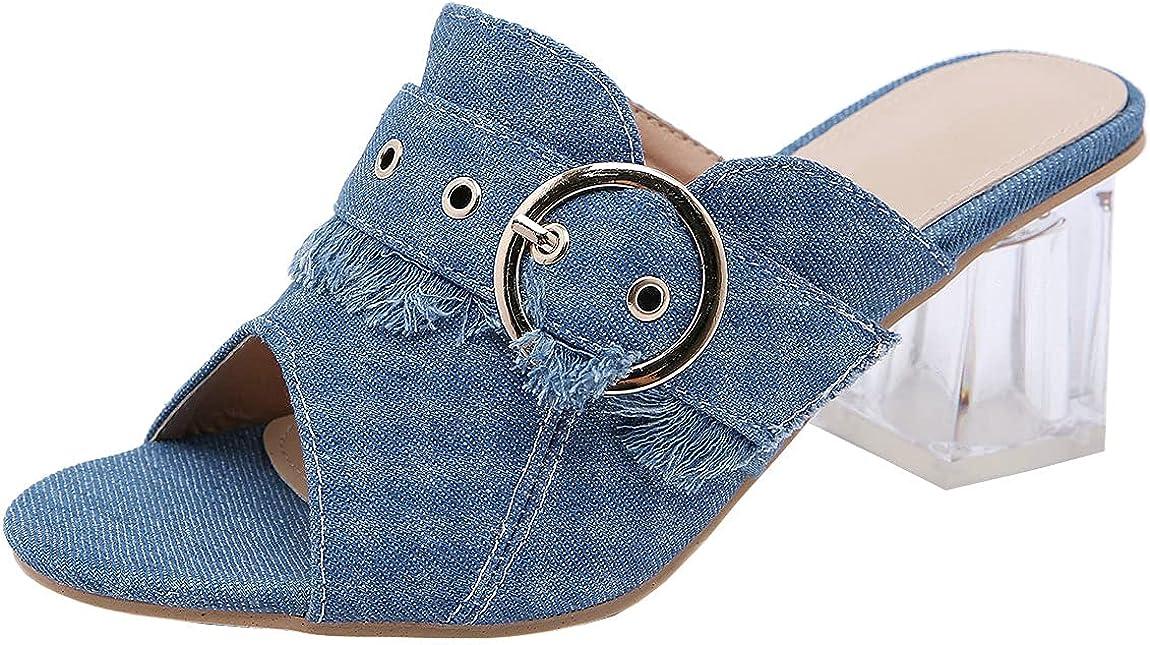 Trendenzy Women's Clear Chunky High Heel Mules Peep Toe Denim Slide Sandals