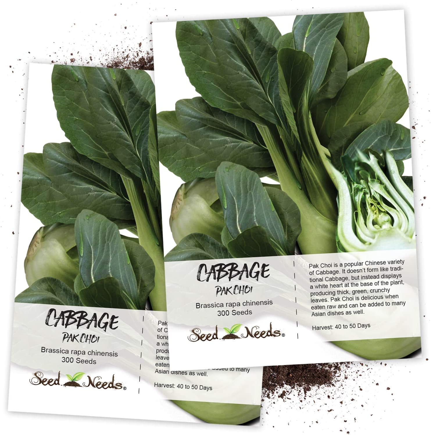 Seed Needs Pak Choi Cabbage Max Trust 74% OFF Brassica Pack 30 of oleracea Twin