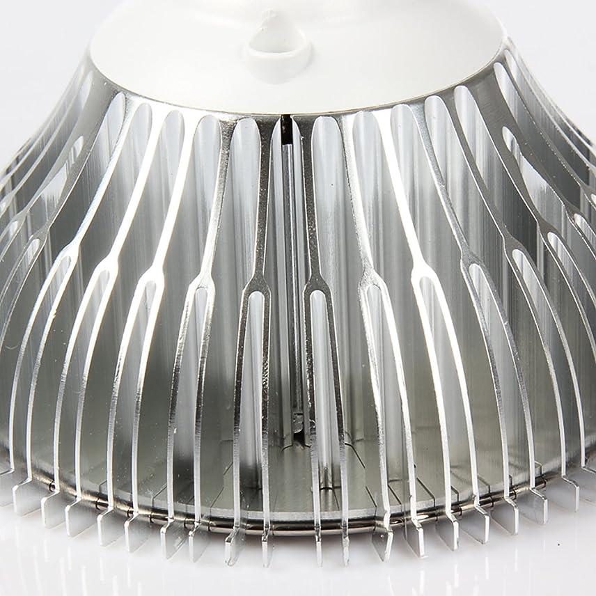 回転させる大学生特徴づけるKIWEN LED投光器 30W 2年品質保証 昼光色 黑色 作業灯 看板灯 集魚灯 駐車場用 防水仕様 1.8ゴート付き …