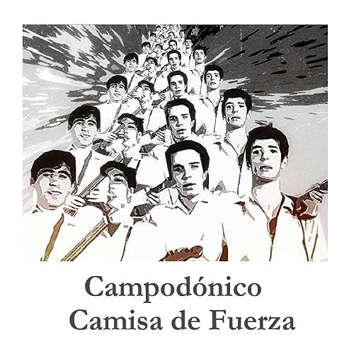 Camisa de Fuerza de Campodónico en Amazon Music - Amazon.es