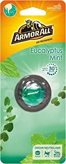 Armor All gaa18560ml5b Vent Clip Air freshener Eucalyptus Mint, grün