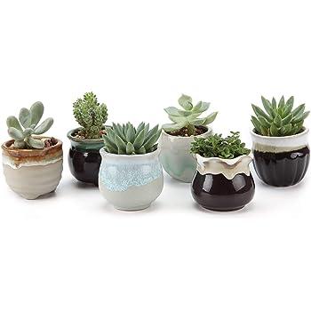 T4U Small Ceramic Succulent Pots with Drainage Set of 6, Mini Pots for Plants, Tiny Porcelain Planter, Air Plant Flower Pots Cactus Faux Plants Containers, Modern Decor for Home and Office