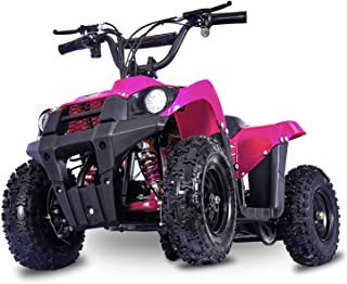 FIT Right Monster 36Volt 500Watt Electric Mini ATV Kids 4 Wheeler Kids Quad Off Road Vehicle with Reverse and Working Head...