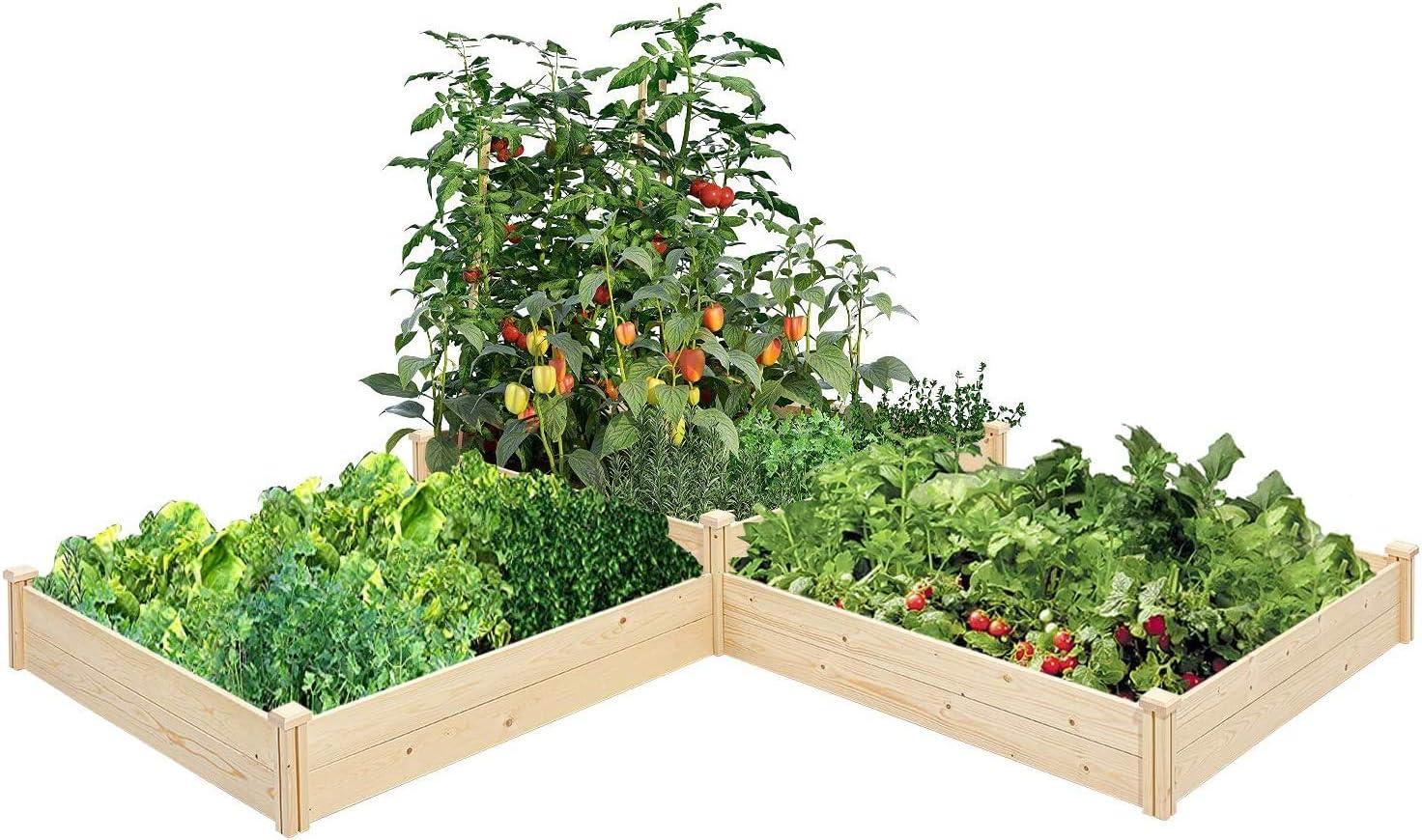 SOLAURA Wooden Raised 信用 Planter 《週末限定タイムセール》 Box Wood Outdoor Kit Solid
