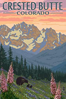 Crested Butte, Colorado - Bear and Cubs with Flowers (16x24 Giclee Gallery Print, Wall Decor Travel Poster)