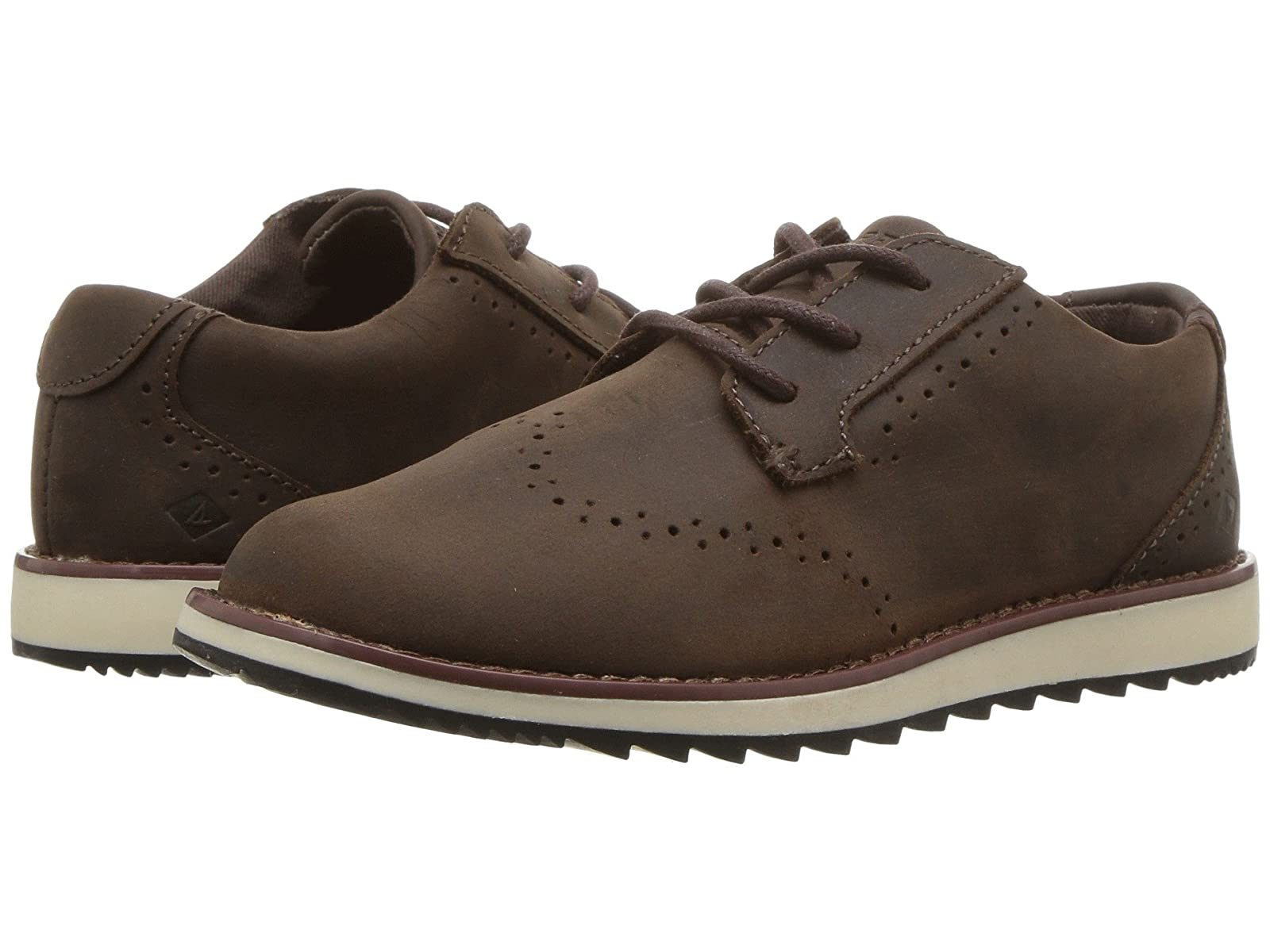 Sperry Kids Windward (Little Kid/Big Kid)Atmospheric grades have affordable shoes