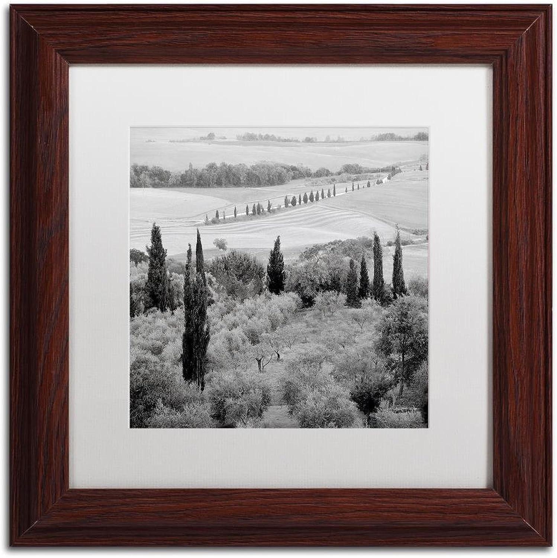 Trademark Fine Art Tuscany VI by Alan bluestein, White Matte, Wood Frame, 11  X 11