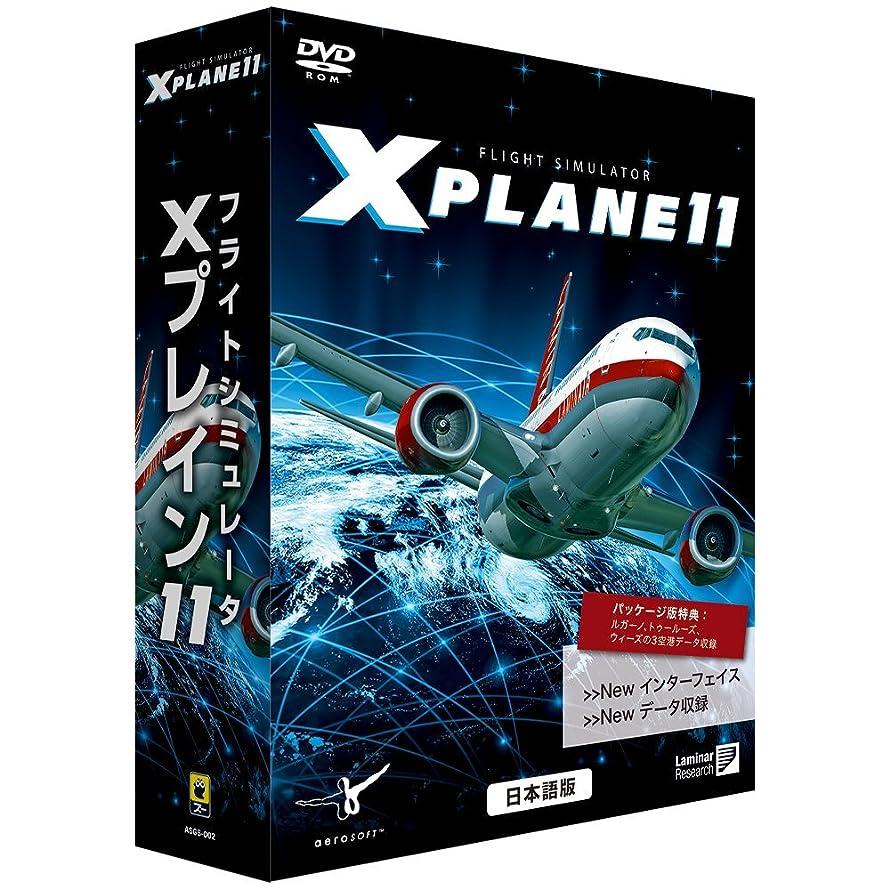 ジェム熟したキャンベラズー フライトシミュレータ Xプレイン11 日本語版
