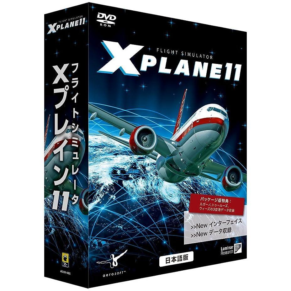 うなずくビジュアル羊のズー フライトシミュレータ Xプレイン11 日本語 価格改定版