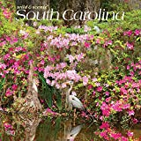 South Carolina Wild & Scenic 2021 12 x 12 Inch Monthly Square Wall Calendar, USA United States of America Southeast State Nature