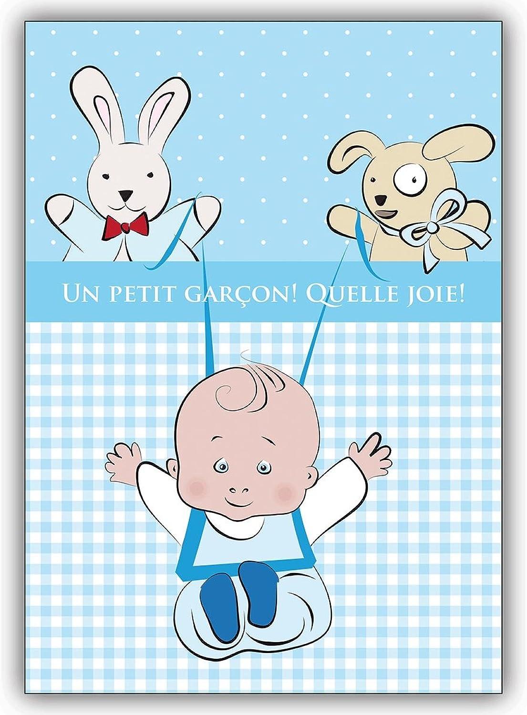 16 Babykarten (16er Set)  Süße französische Babykarte mit blauem Vichy Karo  Un petit garçon  Quelle joie  B00VQKDYFQ | Helle Farben
