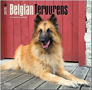 Belgian Tervurens 2015 Square 12x12 (Multilingual Edition)