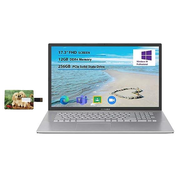Newest Flagship Asus VivoBook 17 Business Laptop 17.3� FHD Display AMD Ryzen 3 3250U Processor 12GB RAM 256GB SSD USB-C HDMI SonicMaster for Business and Student Windows 10 Pro | 32GB Tela USB Card