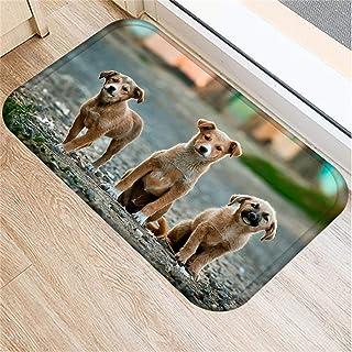 Doormat 1pcs 4060cm Cute Pug Husky Dog Pattern Anti-Slip Suede Carpet Door Mat Doormat Outdoor Kitchen Living Room Floor M...