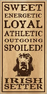 "Imagine This Irish Setter""Spoiled!"" Wood Sign"