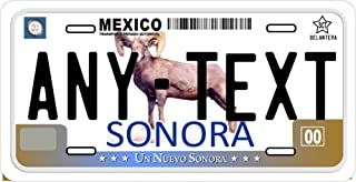 Sonora Mexico Placas License Plate